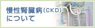 慢性腎臓病(CKD) について